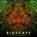Bioscape – Nature's Geometry