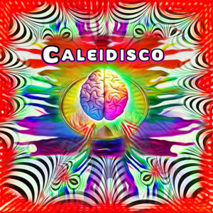 Caleidisco – Infinite Variations of Black & White