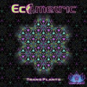 Ecometric – TransPlants