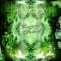 Ekoplex – Creatures Of The Forest