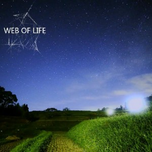 Man Of No Ego – Web Of Life