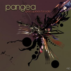 Pangea – Porcupines For Sale
