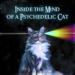 Quantum Universe – Inside The Mind Of A Psychedelic Cat