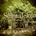 Scintalekt – The Dreamhouse Effect