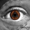 Silicon Slave – Slavery