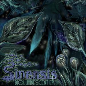 Sinensis – Bioluminescent