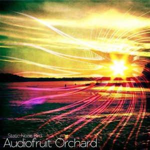 Static Noise Bird – Audiofruit Orchard