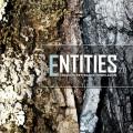 Entities 2