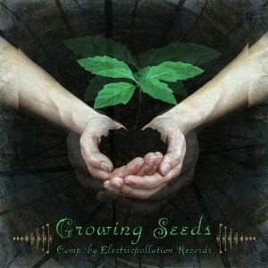 Growing Seeds
