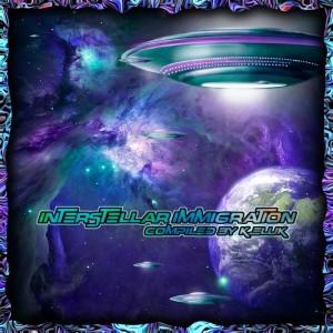 Interstellar Immigration