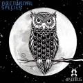 Nocturnal Species