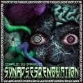 Synapses Renovation